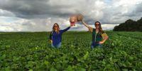 Produtoras de Mangueirinha (PR) se preparam para o plantio do trigo neste inverno